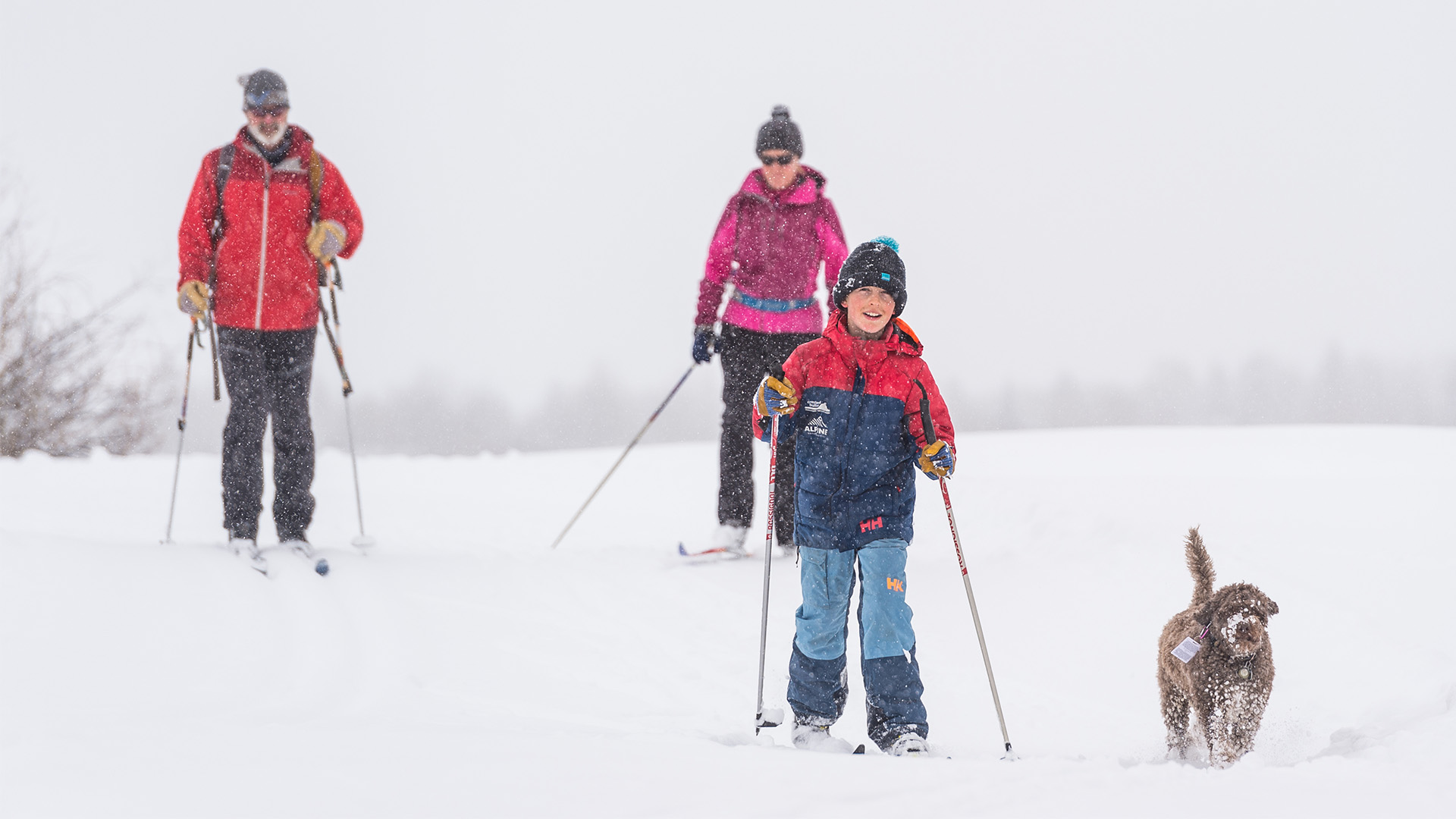 Family Nordic Skis Together in Crested Butte
